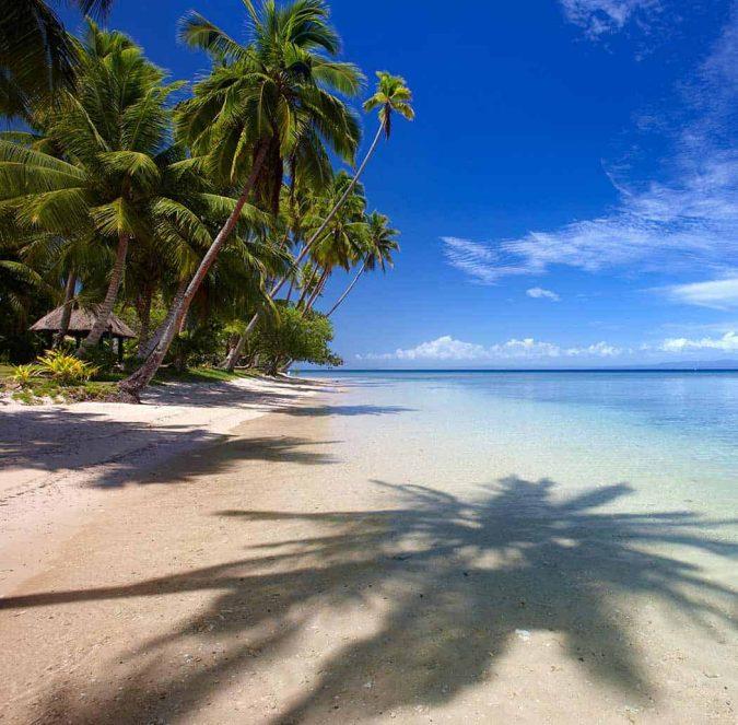 Fiji Strand mit Palmen